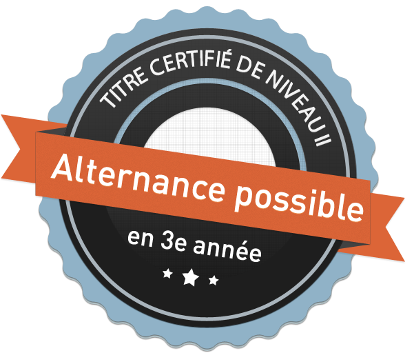 Alternance bachelor web