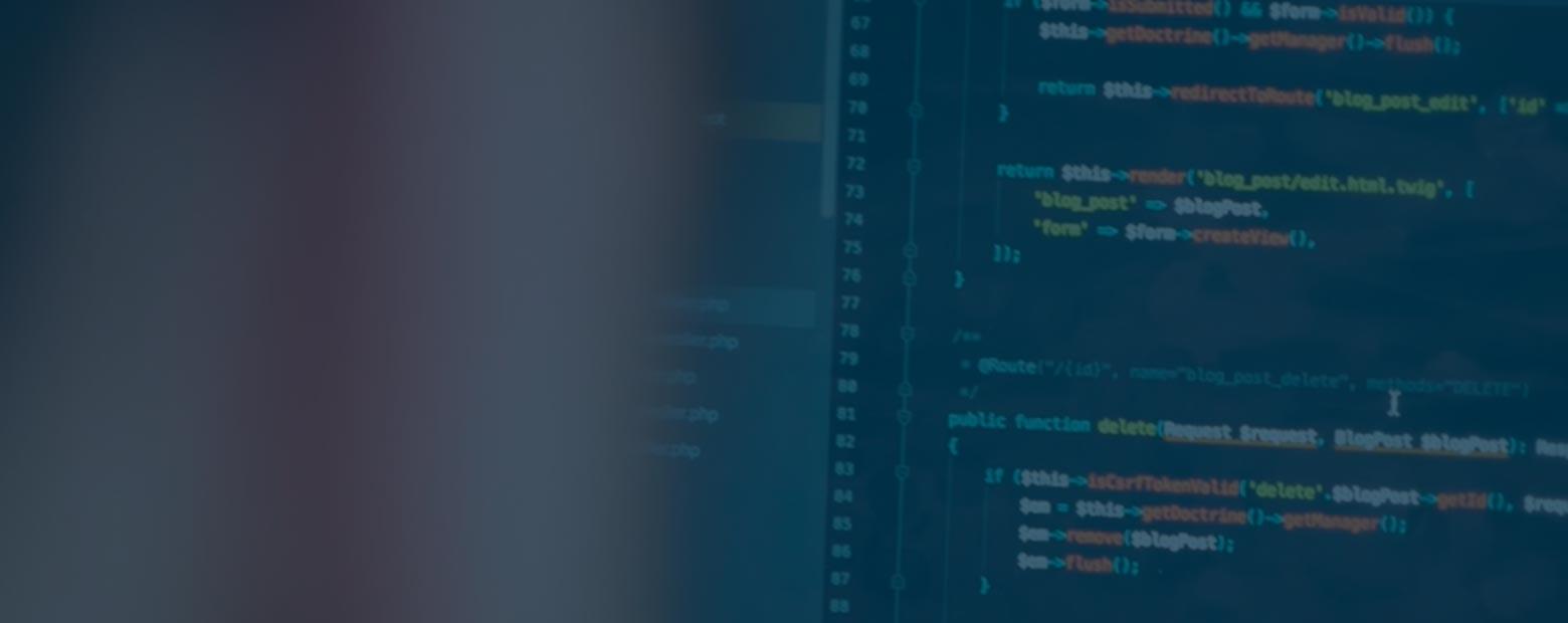 développement web tech lead