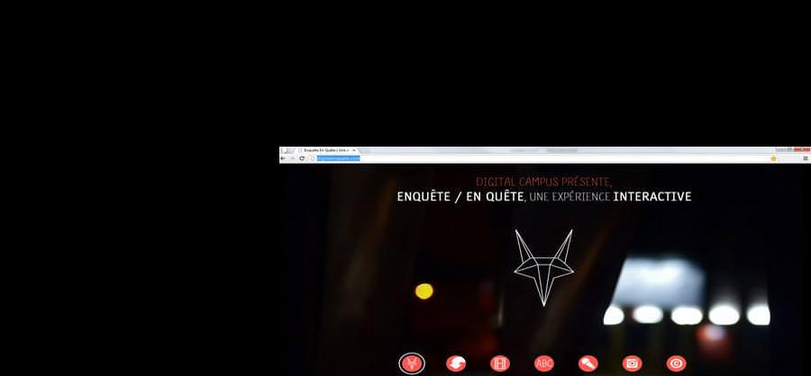 Site Internet - www.digitalenquete.com
